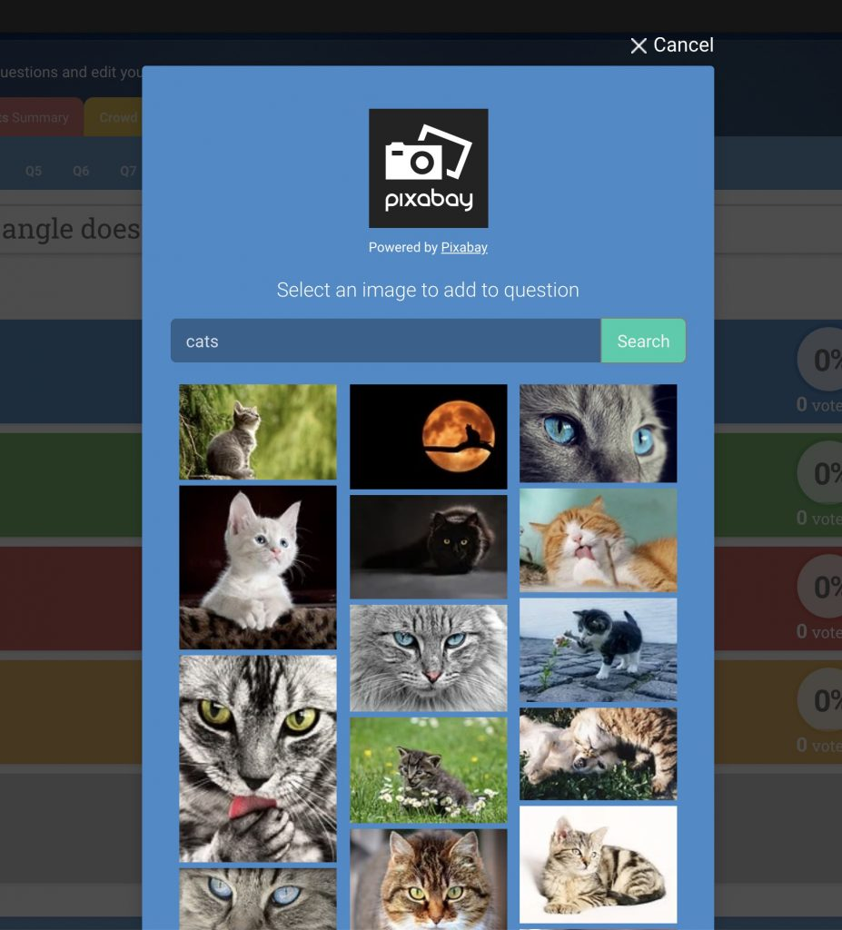 """In addition to video trivia, the new Crowdpurr stock image library powered by Pixabay shows the results for """"cats"""""""